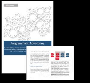 Programmatic Advertising Whitepaper