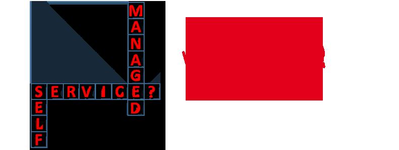Self-Service DSP vs. Managed Service DSP