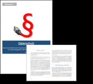 Vorschau Whitepaper Datenschutz beim Programmatic Advertising